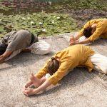 yogasanas hatha yoga